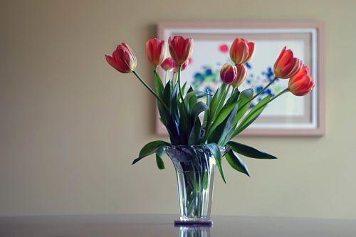 flowerA_opt